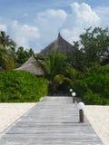 Maneira da prancha na praia Imagens de Stock Royalty Free