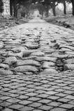 Maneira de Appian Fotografia de Stock