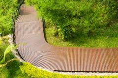 Maneira de madeira da caminhada na floresta Imagens de Stock