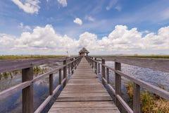 Maneira de madeira do trajeto elevado sobre o campo do pântano Fotografia de Stock