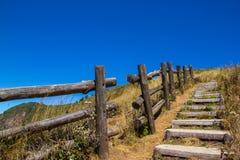 A maneira de madeira longa na montanha é tão calma e frescor Imagem de Stock Royalty Free