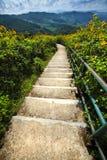 Maneira de montanha Imagem de Stock Royalty Free