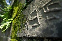 Maneira de pedra que conduz ao céu Imagens de Stock