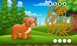 Maneira do achado do labirinto dos ursos do jogo à palavra Imagem de Stock