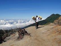 Maneira do portador do enxofre no platô vulcânico de Ijen Fotografia de Stock Royalty Free