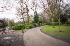 Maneira do trajeto em um parque Imagem de Stock