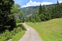 Maneira em montanhas gigantes, República Checa Fotos de Stock Royalty Free