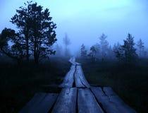 A maneira em nenhuma parte no pântano e na névoa Fotografia de Stock Royalty Free