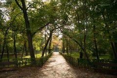 Maneira entre árvores do outono Imagem de Stock Royalty Free