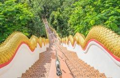 maneira longa das escadas Fotografia de Stock Royalty Free