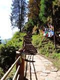 Maneira a Paro Taktsang de Butão Imagem de Stock