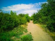 maneira 43-Path Fotografia de Stock