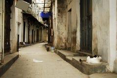 Maneira principal da aléia, cidade de pedra, Zanzibar Fotos de Stock