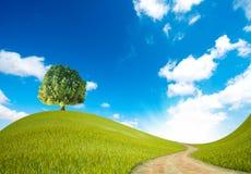 Maneira verde Imagem de Stock Royalty Free