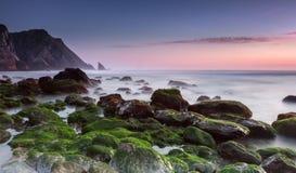 A maneira verde a Foto de Stock