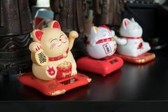 Maneki Neko Japanese lucky cat figures.  stock photos