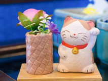 Maneki Neko kot w sklep z kawą zdjęcia royalty free