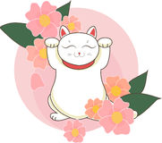 Maneki neko / neco with of japan cherry sacura blossoms and flowers , a cat with a raised paw Japanese luck symbol,  illus. Maneki neko / neco ewith of japan Royalty Free Stock Photos
