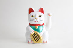 Maneki-neko white. A Maneki-neko plastic cat, Symbolizing luck and wealth, on a white background Royalty Free Stock Image