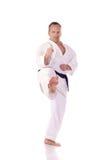 Karateka Fotografering för Bildbyråer