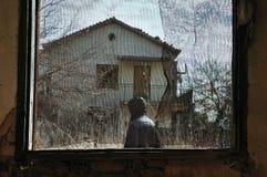 Manen i trädgårds- fönster förtjänar royaltyfri bild