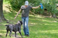 Manen som leker med hans, förföljer Royaltyfri Foto