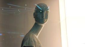 Manequim na loja Simulação humana Foto de Stock Royalty Free
