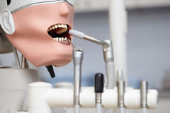 Manequim ou manequim para os estudantes do dentista que treinam em faculdades dentais Fotografia de Stock Royalty Free