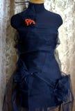 Manequim sob a forma do vestuário da noite Foto de Stock