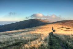 Manera con la salida del sol en canto herboso de la montaña imagen de archivo