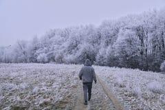 Manera congelada Fotografía de archivo