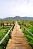 Manera de bambú del paseo Imagenes de archivo