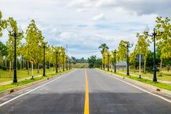 Manera de camino con amarillo del árbol y luz de polo Imagen de archivo libre de regalías