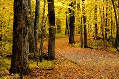Manera de la caminata del otoño Imagen de archivo