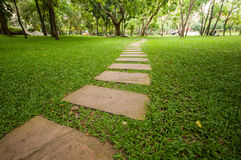 Manera de la caminata en el jardín fotos de archivo