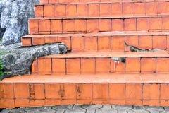 Manera de la escalera hecha por el ladrillo Imágenes de archivo libres de regalías