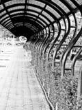 Manera de la trayectoria Fotografía de archivo