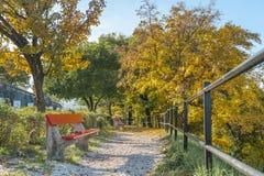 Manera de la trayectoria con los árboles y el banco del color del otoño en Citadella Budapest, Hungría Imágenes de archivo libres de regalías