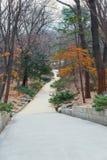 manera de la trayectoria en jardín secreto - palacio o Changdeokgung de Changdeok Foto de archivo