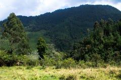 Manera de las montañas a Santa Isabel, Colombia Fotos de archivo