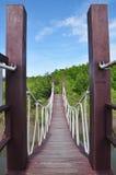 Manera de madera entre el bosque del mangle, Tailandia del camino Foto de archivo
