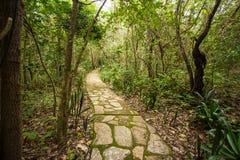 Manera de piedra Jardim hace Eden, veadeiros del DOS del chapada Foto de archivo