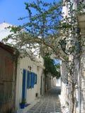 Manera del callejón en Naxos Fotos de archivo