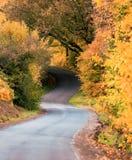Manera del carril del otoño Imagen de archivo libre de regalías