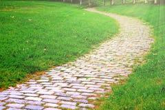 Manera del paseo de la piedra del adoquín en el parque y alguna hierba verde por otra parte Espacio vacío de la copia para el tex Fotografía de archivo libre de regalías