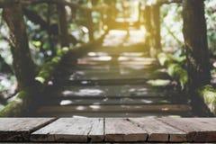 manera del paseo de la selva tropical en el sendero de Ang Ka situado en el intha de Doi Fotografía de archivo