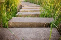 manera del paseo del piso del terrazo en jardín imagenes de archivo