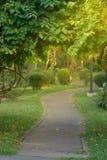 Manera del paseo en cubierta del parque o del jardín con la rama de árbol imagen de archivo libre de regalías