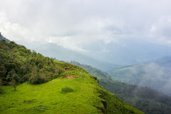Manera del paseo en el top verde del bosque de la pista de senderismo de la montaña en thaila Imagenes de archivo