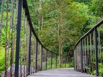 Manera del paseo del puente en el bosque Imágenes de archivo libres de regalías